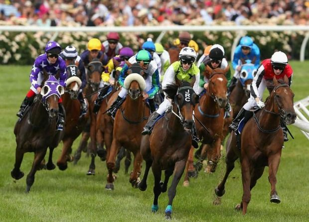 Melbourne Cup Day horses
