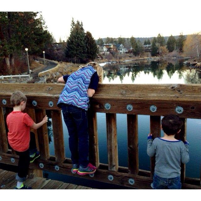 pooh sticks on the bridge