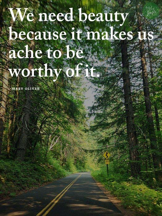 We need beauty  because it makes us ache to be  worthy of it. -Mary Oliver